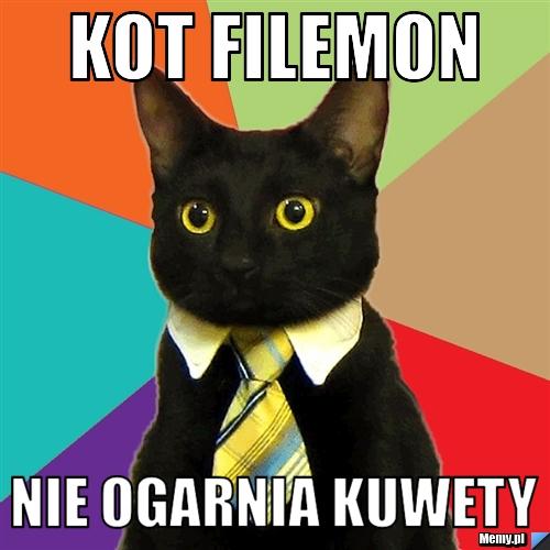 Kot Filemon Nie ogarnia kuwety