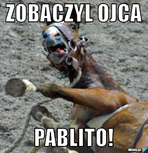 Zobaczyl Ojca PABLITO!