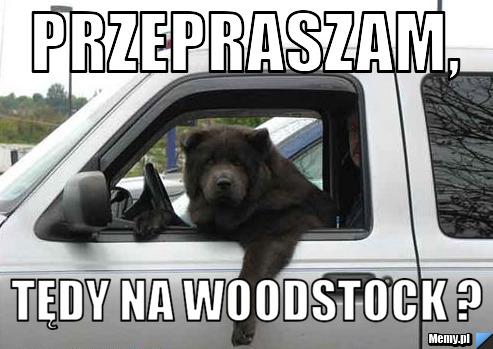 przepraszam, tędy na woodstock ?