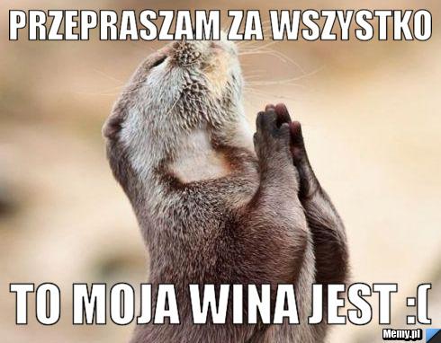 http://i1.memy.pl/obrazki/5dda173468_przepraszam_za_wszystko.jpg