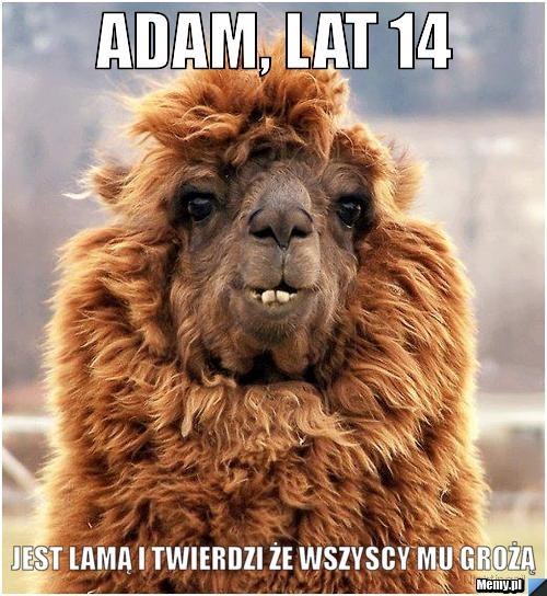 Adam, lat 14 Jest lamą i twierdzi że wszyscy mu grożą