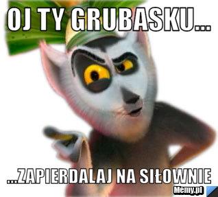 8547223126_oj_ty_grubasku.jpg
