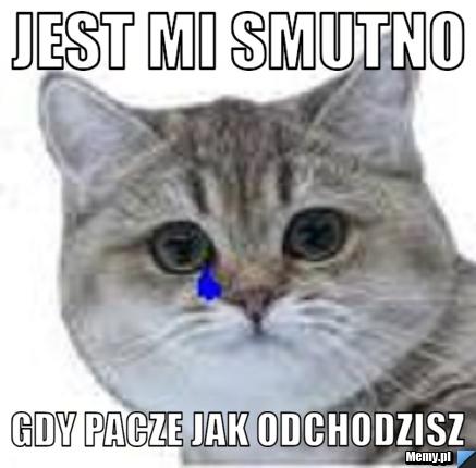 9e84322732_jest_mi_smutno.jpg