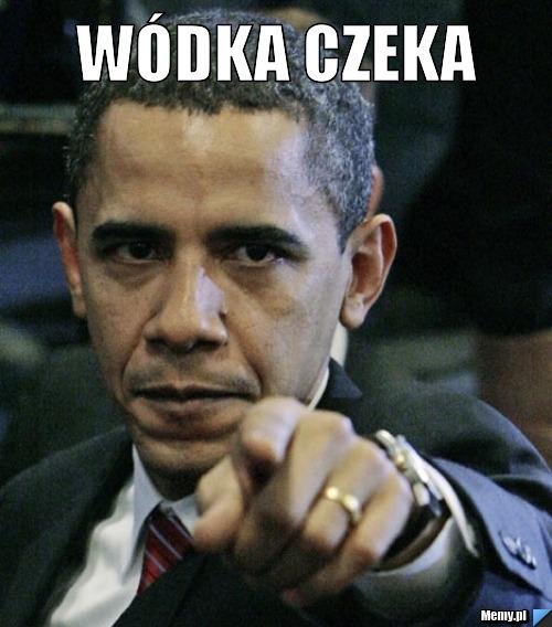 c0a8124262_wodka_czeka.jpg
