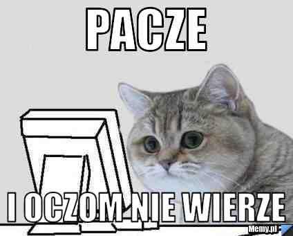 c7f3906412_pacze.jpg