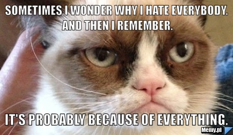 Sometimes I wonder why I hate everybody. And then I remember. It\'s probably because of everything.